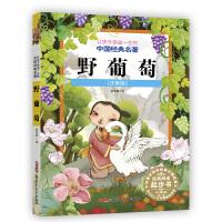 野葡萄(注音版)让孩子受益一生的中国经典名著 3-8岁