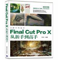 Final Cut Pro X从新手到高手