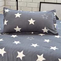 伊心爱单只装枕套 枕套单人枕头套床上用品一对拍 二 48cmX74cm