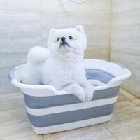 【支持礼品卡】泰迪法斗宠物洗浴盆狗狗洗澡盆 便携可折叠浴桶浴盆浴缸猫咪 he9