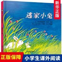 逃家小兔绘本硬壳精装 纽约时报年度儿童图书 0-3-4-5-6周岁幼儿园小学一二年级宝宝儿童启蒙故事读物图画童书籍非注