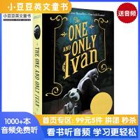 #The One and Only Ivan 独一无二的伊凡 纽伯瑞大奖 进口英文原版 经典儿童青少年文学小说读物 独一