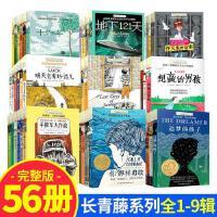 长青藤国际大奖小说书系列第1-9辑 十岁那年9-12-15岁儿童文学读
