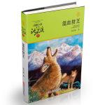 动物小说大王沈石溪・品藏书系:混血豺王(升级版)