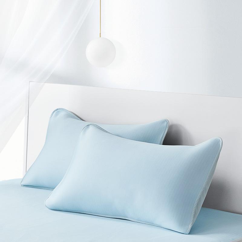 LF拉芙菲尔 凉枕套单人枕用夏季凉爽枕头套夏天一对装双人枕芯套 22℃科技冷感枕套 矿物般清凉 可水洗冷感