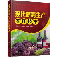 现代葡萄生产实用技术