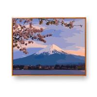 数字油画风景花卉手工绘填充涂色减压客厅画画diy油彩画装饰画