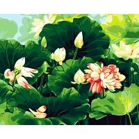 数字油画手绘客厅花卉风景装饰画夏荷飘情 40*50