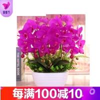 花瓶蝴蝶兰仿真花套装摆件 客厅装饰花整体花瓶绢花花艺摆设盆栽品质