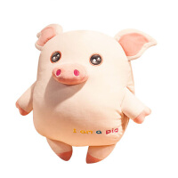 小猪暖手插手枕头抱枕公仔布偶娃娃可爱超软羽绒棉午睡靠垫毛绒 50cm