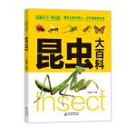 昆虫大百科(学生版)探索天下