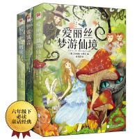 童话故事:尼尔斯骑鹅旅行记+爱丽丝梦游仙境+伊索寓言(全三册)