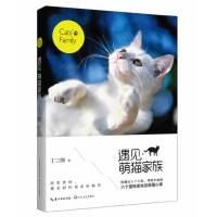 遇见.萌猫家族 丁三郎 著作休闲/爱好 宠物杂事 摄影 摄影集/图册 幽默与趣味漫画畅销书^@^