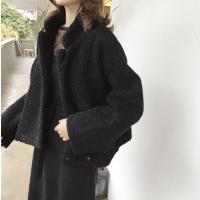 冬季韩版chic加厚仿羊羔毛保暖宽松口袋立领长袖毛毛短外套女学生