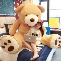 毛绒玩具生日熊美国布娃娃公仔送女友情人节礼物 美国大熊