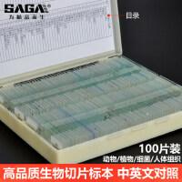 SAGA生物切片套装实验显微镜标本中英文动物植物细胞玻璃载玻片儿童中小学生