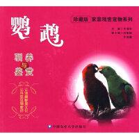 【新书店正版】鹦鹉驯养与鉴赏王增年9787811176650中国农业大学出版社