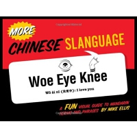英文原版 中国俚语:普通话词汇和短语指南 More Chinese Slanguage (English and Ch