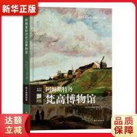 阿姆斯特丹梵高博物馆 保拉.拉佩里 9787544747349 译林出版社 新华书店 品质保障