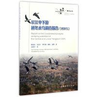 长江中下游越冬水鸟调查报告(2015)/长江生命系列丛书
