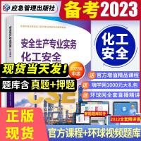 备考2021 注册安全工程师2020 化工安全专业实务教材 注安师 注册安全工程师2020教材 中级注册安全工程师202