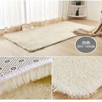 金丝绒色简约地毯客厅沙发茶几毯可定制满铺水洗室内脚垫