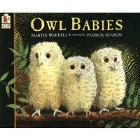 Owl Babies 小猫头鹰 廖彩杏书单 [3-9岁]
