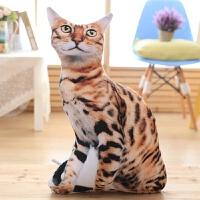 抱枕 格灵雅 创意仿真滑稽男3D立体狗狗头抱枕哈士奇宠物个性恶搞毛绒玩具猫咪