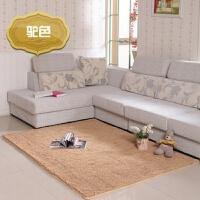 可爱雪尼尔地毯地垫家用客厅茶几房间地毯长方形卧室床边地毯定制 50x80cm 标准门垫