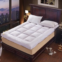 床垫子加厚双人1.8m床褥垫1.5米单人0.9学生1.2榻榻米软垫被褥子