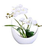 仿真蝴蝶兰套装 假花绢花装饰花兰花客厅摆设花艺 花瓶盆栽摆件