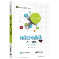 micro:bit 入门指南