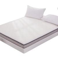 天然乳胶床垫1.8m床褥子垫背1.5m学生宿舍单人榻榻米记忆