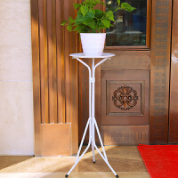 铁艺花架落地式阳台花盆架绿萝吊兰花架子室内客厅地面花架 白色60cm 【HJ-30】