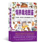 福音馆图鉴系列 6:饲养栽培图鉴