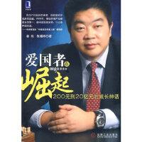 【新书店正版】爱国者在崛起 姜伟,陈曦桦 机械工业出版社 9787111253211