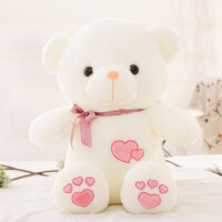 抱抱熊公仔毛绒玩具女生可爱萌搞怪玩偶泰迪熊送女友布娃娃
