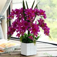 蝴蝶兰仿真花套装摆件家居客厅电视柜假花绢花塑料花装饰花卉摆设