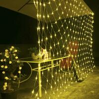 LED灯彩灯闪灯串灯渔灯防水工程装饰梦幻灯光节状布置草坪