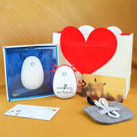 生日礼物女生创意diy定制小清新圣诞节送女友老婆浪漫实用礼品 充电暖手宝