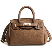女士包包新款潮冬季手提小包包时尚百搭铂金包单肩斜挎包女包