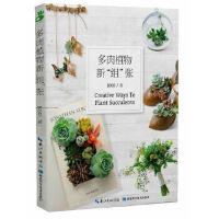 """多肉植物新""""组""""张 JOJO 湖北科学技术出版社 9787535266026"""