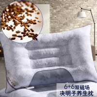 决明子珍珠棉枕头玉石枕芯 花草枕 40*60cm ±