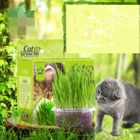 【支持礼品卡】猫草 猫森林天然营养土大麦猫草种子带盆猫草种子 去毛球猫零食ie5