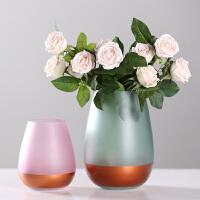居家装饰摆件花瓶玻璃半透明彩色清新插花瓶 客厅餐桌创意干花水培花瓶摆件