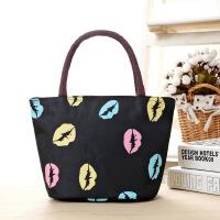 新款女包饭盒袋牛津帆布包包便当包妈妈包手提包女小布包