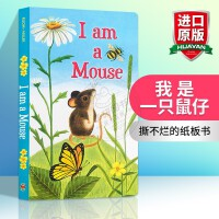 英文原版绘本 I Am a Mouse 我是一只鼠仔 英文版儿童英语启蒙早教 I Am a Bunny 同系列 小动物