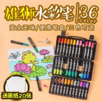 台湾雄狮儿童水彩笔 36色彩笔套装 幼儿园绘画小学生初学者手绘画笔