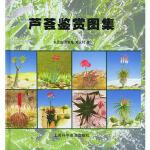 芦荟鉴赏图集 朱亮锋,何其敏,郑永利 上海科学普及出版社 9787542726414